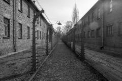 RS_Krakau_Auschwitz_-61