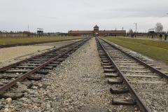 RS_Krakau_Auschwitz_-63