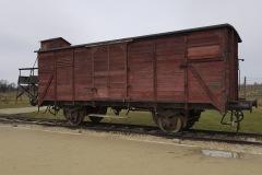 RS_Krakau_Auschwitz_-64