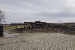 RS_Krakau_Auschwitz_-67