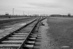 RS_Krakau_Auschwitz_-71