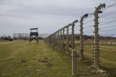 RS_Krakau_Auschwitz_-73