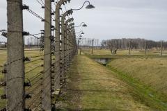 RS_Krakau_Auschwitz_-74