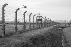 RS_Krakau_Auschwitz_-75