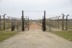 RS_Krakau_Auschwitz_-80