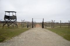RS_Krakau_Auschwitz_-81