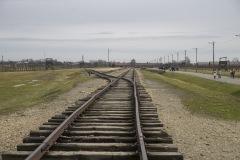 RS_Krakau_Auschwitz_-83