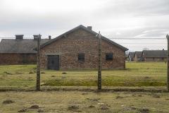 RS_Krakau_Auschwitz_-87