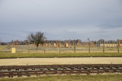 RS_Krakau_Auschwitz_-89